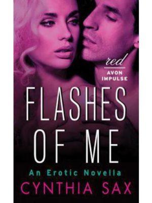 Erotic novel about a voyeur